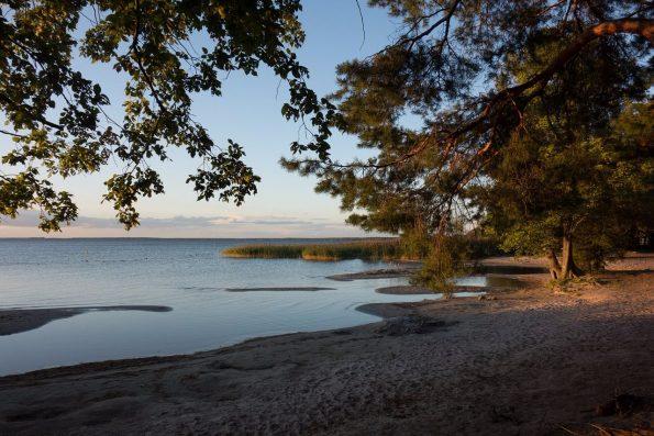 Strand Müritzsee