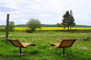 urlaub-mecklenburger-seenplatte-adele